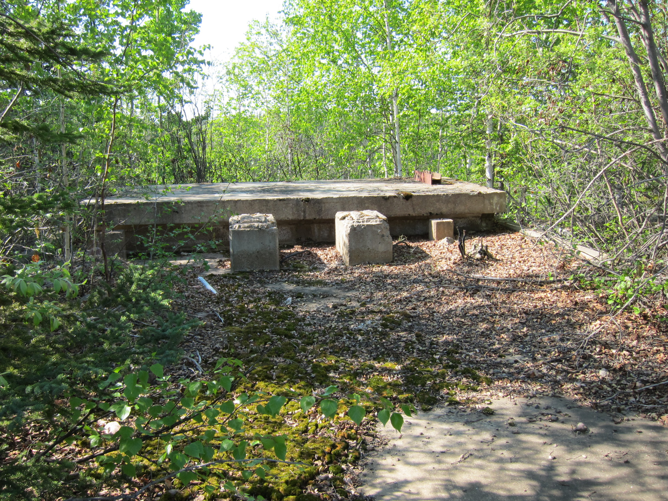 Remnants of a concrete structure in the forest