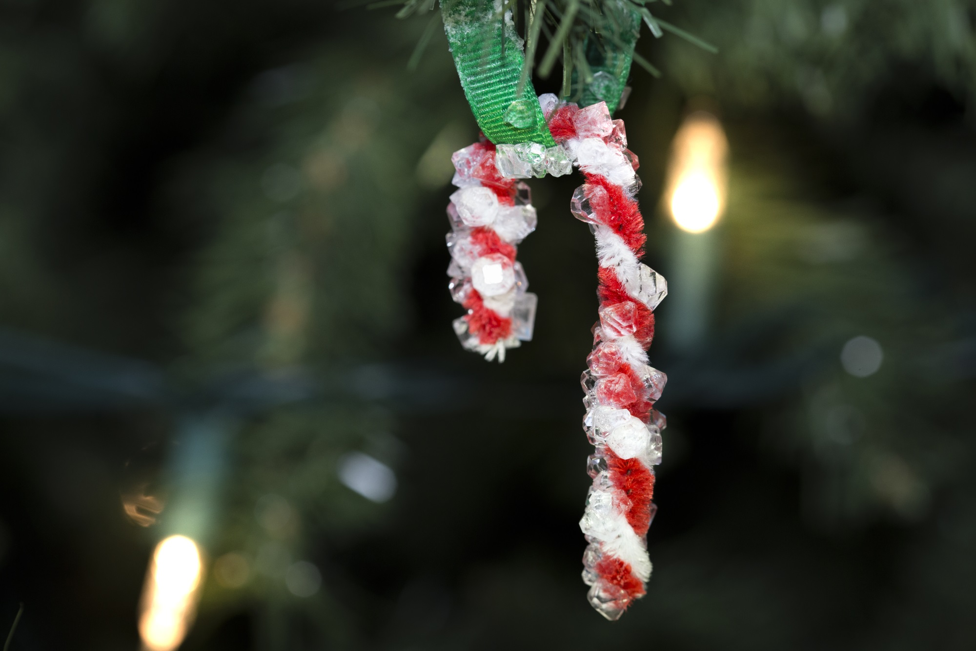 crystal candy cane hanging on a tree