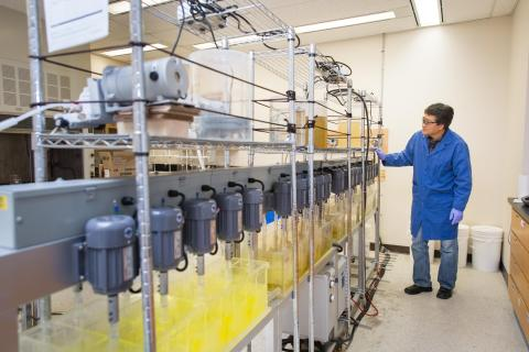 An SRC employee oversees the rare earth solvent extraction process