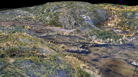 Point cloud showing northern landscape